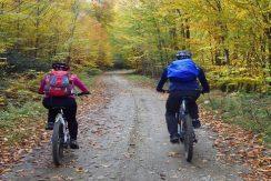 آموزش دوچرخه سواری 2
