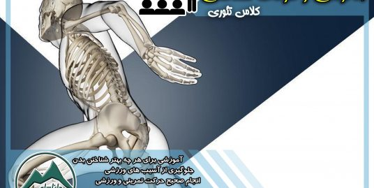 آموزش آناتومی و حرکت شناسی