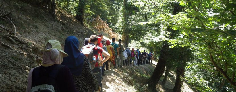 جنگل های انجیلی ماناسلوتور (10)