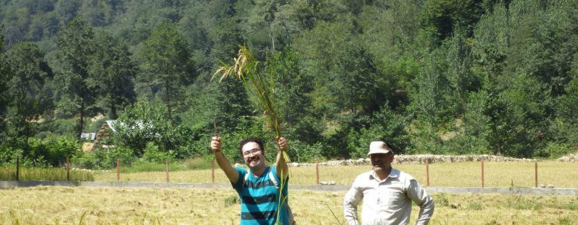جنگل های انجیلی ماناسلوتور (12)