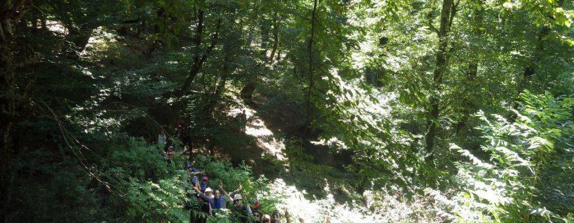جنگل های انجیلی ماناسلوتور (13)