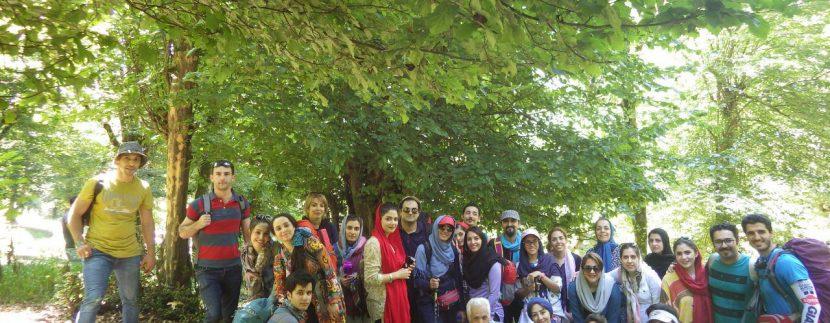 جنگل های انجیلی ماناسلوتور (4)