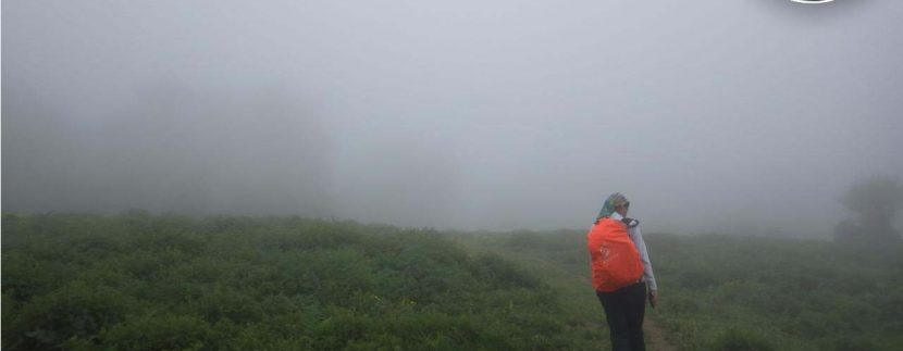 تور طبیعتگردی چشمه پراو - تور ارفع ده - تور ماناسلو - طبیعتگردی