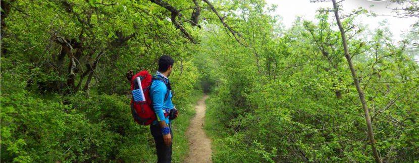 ور طبیعتگردی چشمه پراو - تور ارفع ده - تور ماناسلو - طبیعتگردی تور جنگل ارفع تور طبیعتگردی تور دوچرخه سواری6