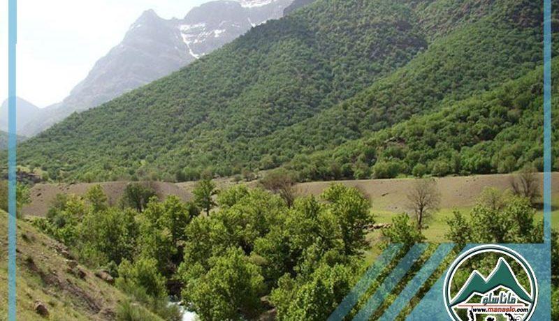 تور دو روزه دره نی گاه ماناسلو (2)