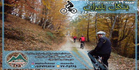 تور دوچرخه سواری جنگل بلیران
