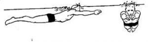 آموزش شنای قورباقه