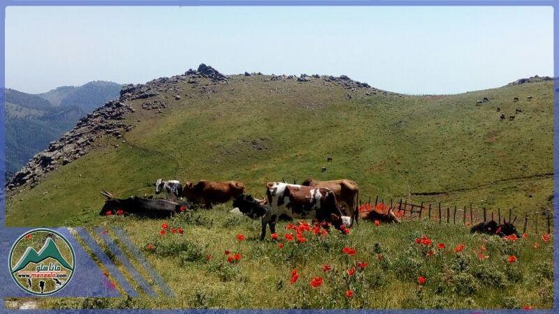 تور دوچرخه سواری روستای اولسبلانگاه (2)