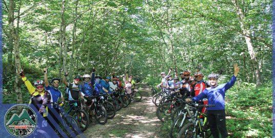 تور دوچرخه سواری جنگل عالی کیا