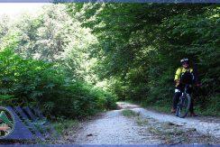 تور دوچرخه سواری جنگل پالند گروه گردشگری ماناسلو (6)