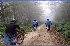 تور دوچرخه سواری کجور به نوشهر گروه گردشگری ماناسلو (3)