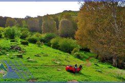 تور طبیعت گردی جنگل های انجیلی ماناسلو (2)