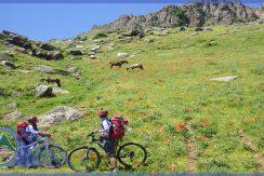 تور دوچرخه سواری نئور به سوباتان گروه گردشگری ماناسلو www.manaslo (3)