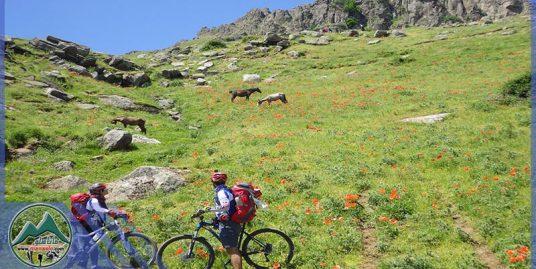 تور دوچرخه سواری نئور به سوباتان