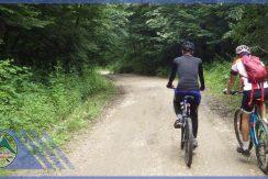 تور دوچرخه سواری جنگل بلیران (2)