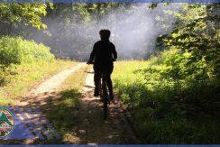 تور دوچرخه سواری جنگل اساس باشگاه دوچرخه سواری ماناسلو (3)