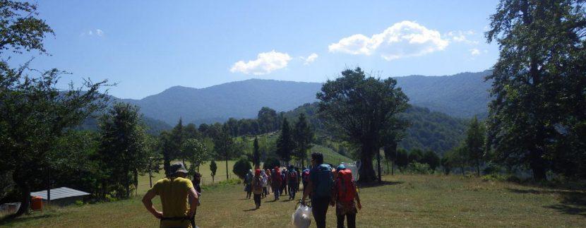 جنگل های انجیلی ماناسلوتور (6)
