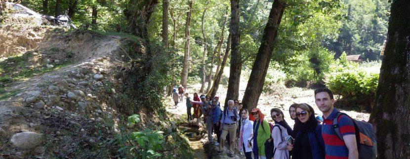 جنگل های انجیلی ماناسلوتور (9)