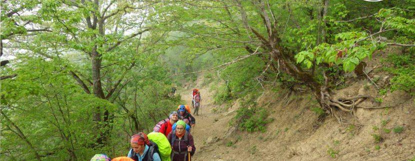 ور طبیعتگردی چشمه پراو - تور ارفع ده - تور ماناسلو - طبیعتگردی تور جنگل ارفع تور طبیعتگردی تور دوچرخه سواری7