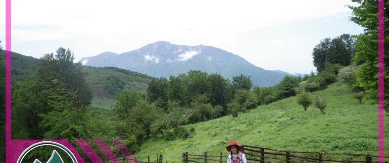 عکسهای سفر جنگل لاکمر - تور طبیعتگردی - تور دوچرخه سواری - تور کوهنوردی - طبیعتگردی ماناسلو - تور یکروزه - تور دوچرخه دو روزه (1)