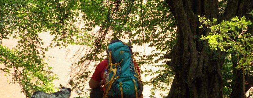 تور مرداب هسل گروه گردشگری ماناسلو www.manaslo (15)