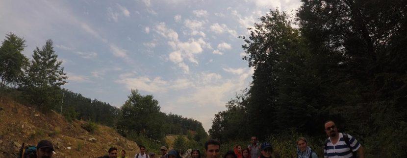 تور مرداب هسل گروه گردشگری ماناسلو www.manaslo (16)