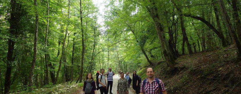 تور مرداب هسل گروه گردشگری ماناسلو www.manaslo (3)