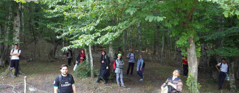 تور مرداب هسل گروه گردشگری ماناسلو www.manaslo (7)