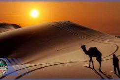 تور کویر مصر گروه گردشگری ماناسلو www_manaslo_com (4)