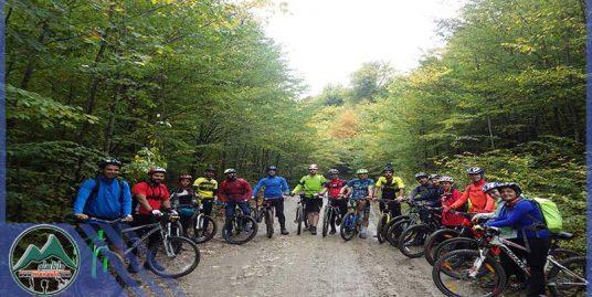 تور دوچرخه سواری جنگل اساس