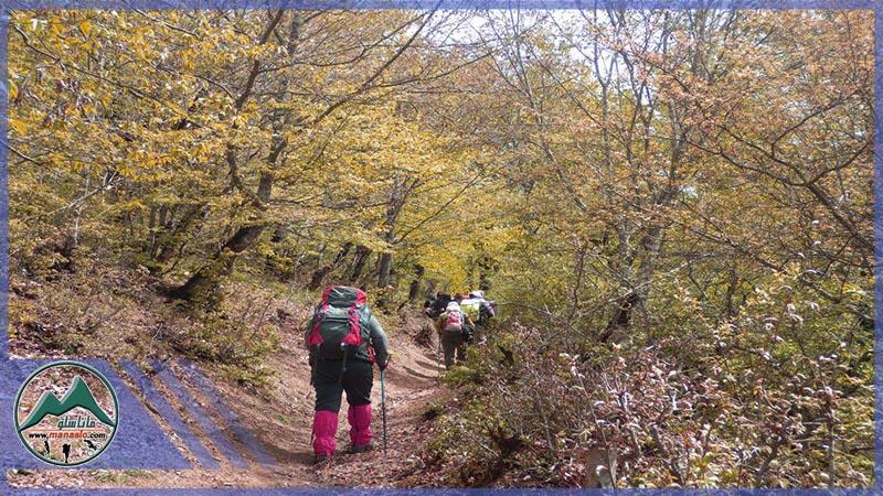 تور طبیعت گردی جنگل های انجیلی ماناسلو (5)