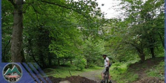 تور دوچرخه سواری جنگل رزکه